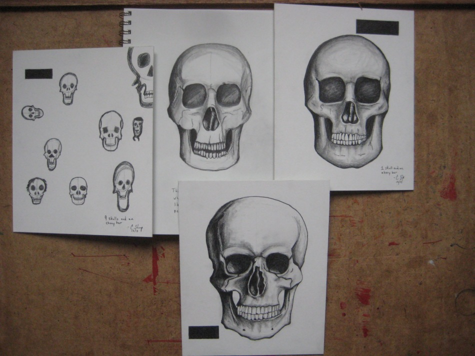 Practicing pencil form by drawing the human skull.